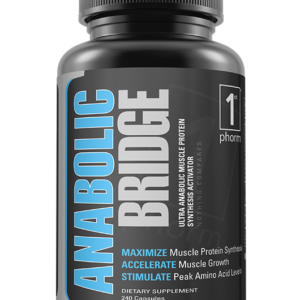 Anabolic Bridge